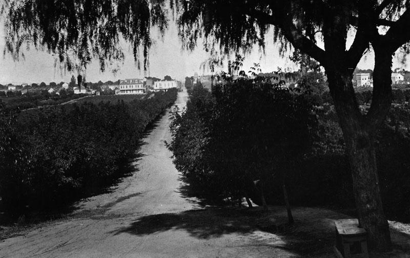 Colorado Blvd Pasadena 1884