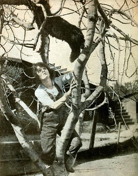 Bebe Daniels up a tree. (Bizarre Los Angeles)