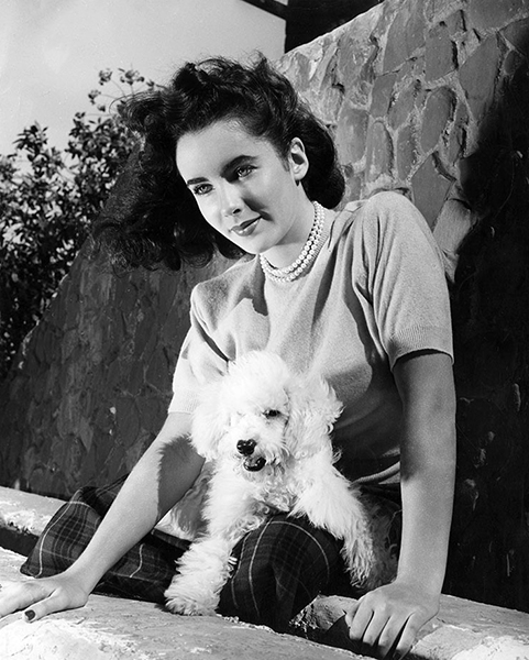 "Elizabeth Taylor and her poodle ""Lord Peewee"" in 1947. Bizarre Los Angeles"
