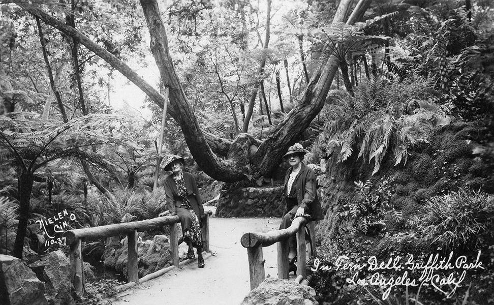 Griffith Park's Fern Dell Gardens, 1920s. (Bizarre Los Angeles)