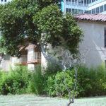 Los Angeles Ambassador Hotel bungalows (Bizarre Los Angeles)