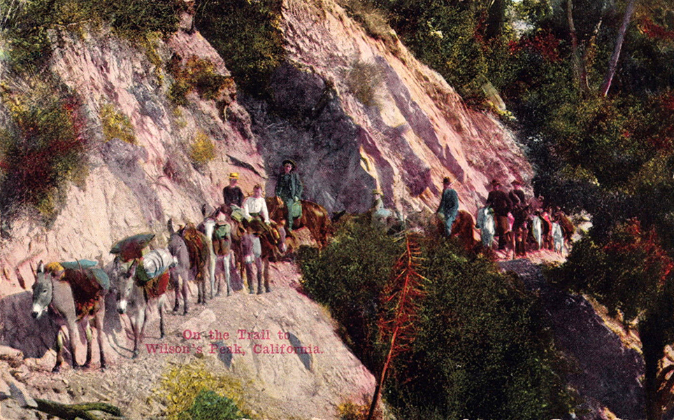 A 1912 postcard depicting a mule train traveling along a trail that led to the top of Mt. Wilson. (Bizarre Los Angeles)