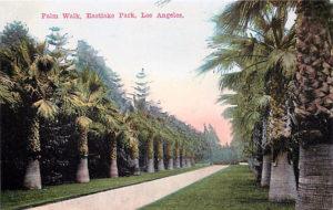Palm Walk Eastlake Park 1910