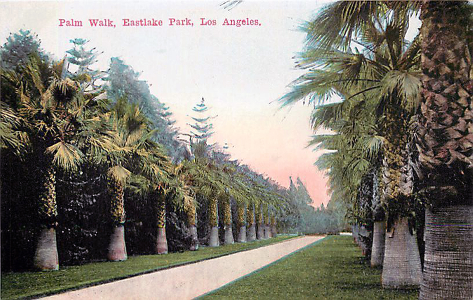 Palm Walk Eastlake Park 1910