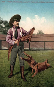 """""""Tex,"""" a trainer at the Alligator Farm in Lincoln Heights."""