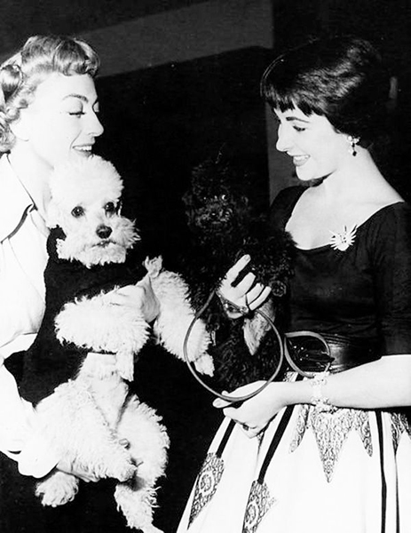 """""""Miss Taylor is a spoiled, indulgent child, a blemish on public decency."""" -- Joan Crawford (Bizarre Los Angeles)"""