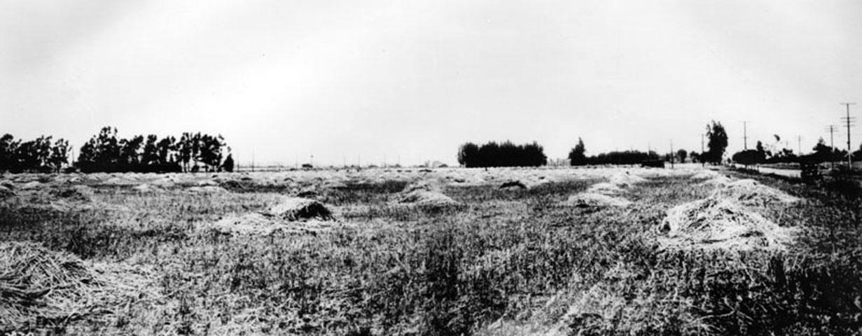 Culver City in 1913. (Bizarre Los Angeles)