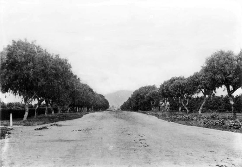 Sunset Boulevard 1883