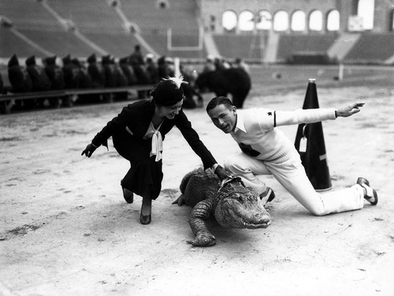 alligator cheerleaders Los Angeles Colosseum