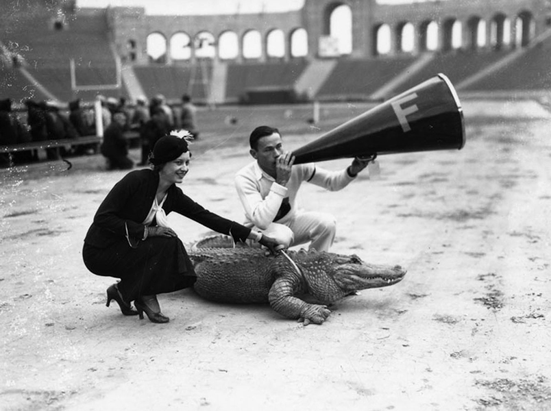alligator Los Angeles Colosseum 1931