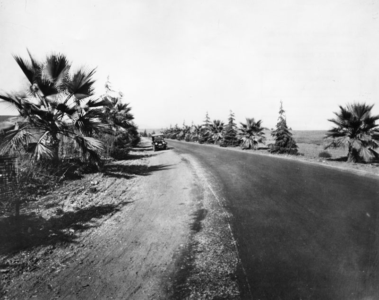 Beverly Drive 1923