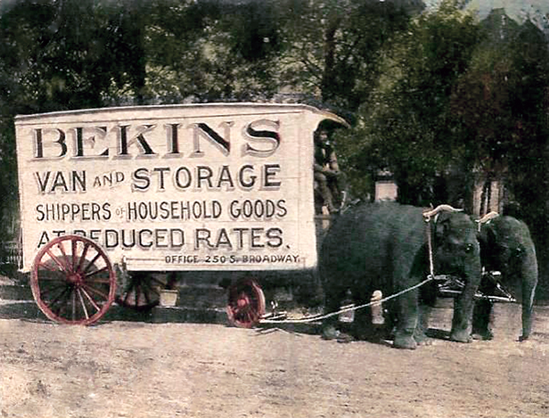 Bekins Van and Storage elephant 1910 1911