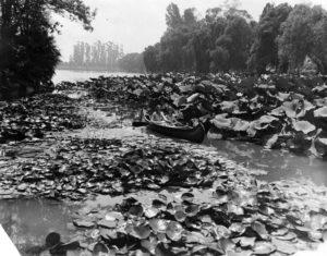 Echo Park Lake Los ANgeles 1929