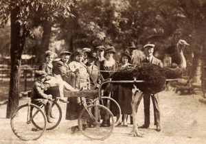 Cawston Sotrich Farm 1911