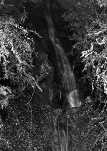 A 100 ft waterfall on Harold Lloyd's Beverly Hills estate, circa 1937. (Bizarre Los Angeles)
