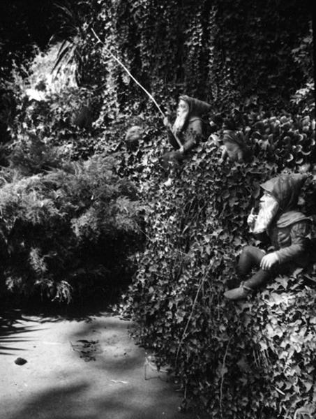 Busch Gardens dwarfs