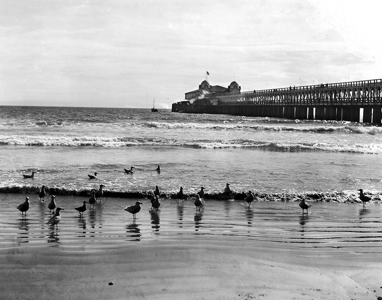 Long_Beach_pier_and_pavilion,_taken_from_the_beach_with_gulls_in_the_foreground,_ca.1910_(CHS-5440)