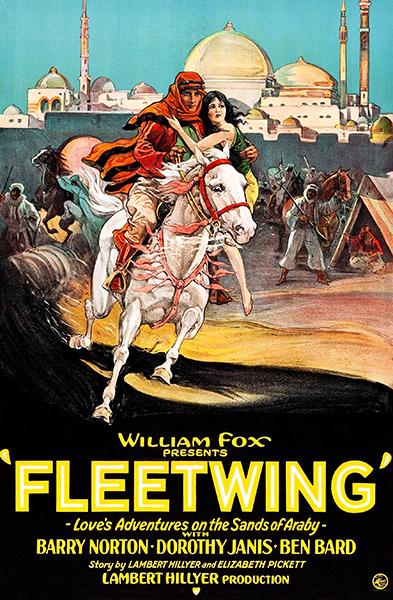 Fleetwing 1928 Dorothy Janis