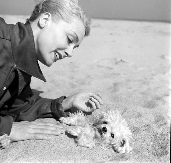 June Havoc doggie
