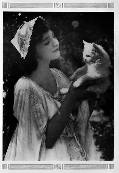 Julia Faye cat