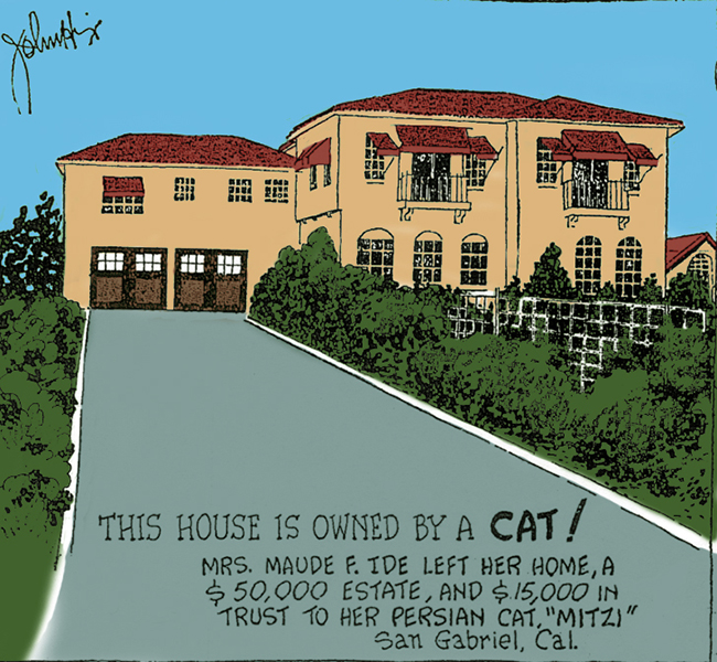 Wealthy Cat's Estate