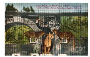 Capt Murphy Selig Zoo California Wild Animal Farm