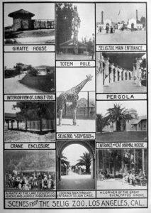 Selig Zoo 1915