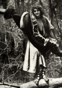Ormi Hawley snake