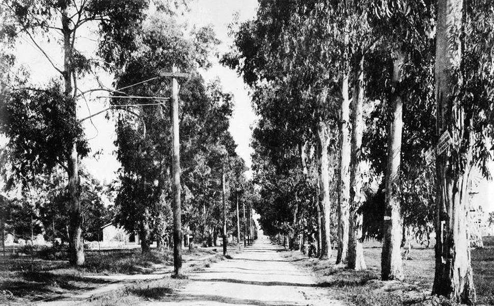 Santa Monica Blvd. looking east from Beechwood Drive, c. 1888. Bizarre Los Angeles