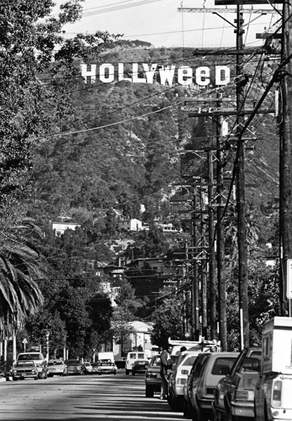 Hollyweed in 1983. (Bizarre Los Angeles)