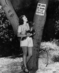 "A rebel with a dog. Mrs. Bialac and Patsy observe the ""No Smoking"" signs in a Los Angeles fire area (probably Griffith Park). Photo taken in 1948. (LAPL: 00039028) Bizarre Los Angeles"