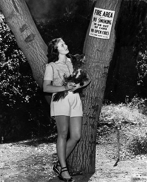 """A rebel with a dog. Mrs. Bialac and Patsy observe the """"No Smoking"""" signs in a Los Angeles fire area (probably Griffith Park). Photo taken in 1948. (LAPL: 00039028) Bizarre Los Angeles"""