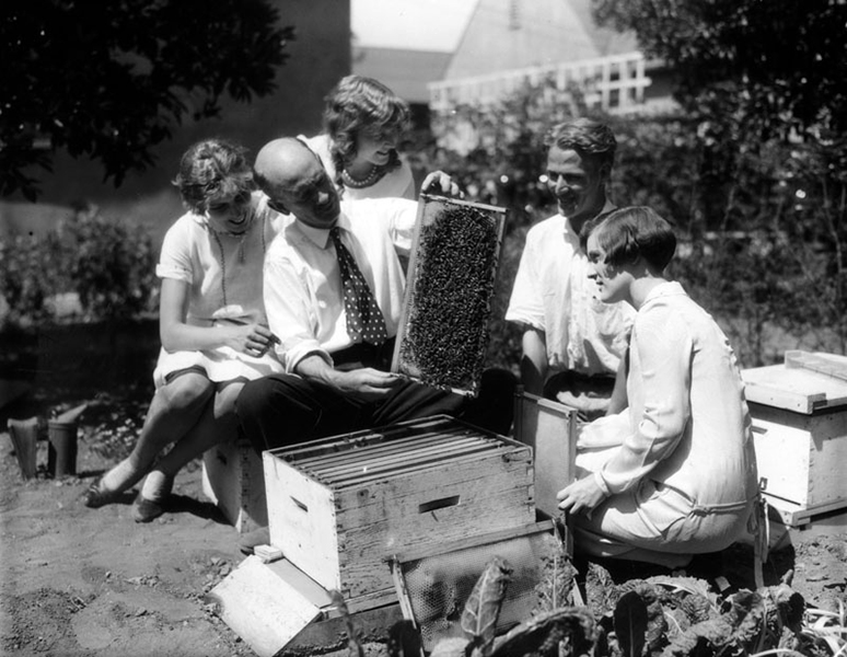 May Betteridge at the Alhambra apiary of A.L. Boyden, c. 1927. Bizarre Los Angeles